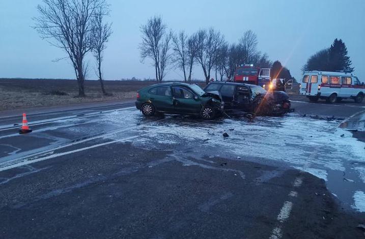 В Оршанском районе Volkswagen врезался во встречный Renault.